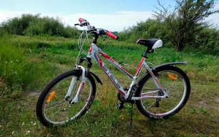 Описание и отзывы о велосипеде для женщин Stels Miss 6100