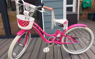 Описание велосипеда для детей Trek Mystic 16, отзывы родителей