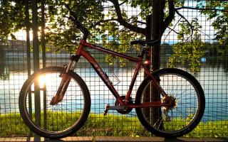 Велосипед Тrek 3900: описание, стоимость, отзывы владельцев