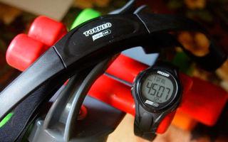 Мониторы сердечного ритма Torneo — обзор моделей