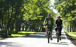 Велодорожки — история появления, разновидности, знак
