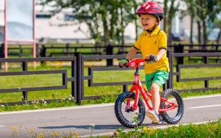 Детские велосипеды Stels: обзор моделей, их цена, отзывы родителей