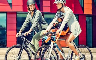 Кресло на велосипед для ребенка: типы, советы при выборе, обзор моделей