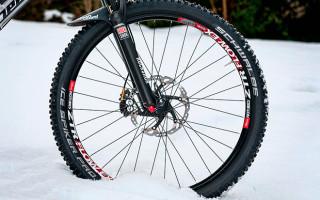Технические характеристики велопокрышек для зимы Schwalbe Ice Spiker Pro Evolution