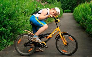 Велосипед для детей Trek Jet 20: описание, стоимость, отзывы родителей