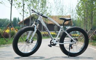 Велосипеды Love Freedom: описание, обзор моделей, стоимость