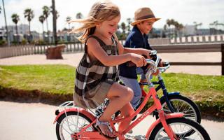 Велосипед  для девочки 7-10 лет, 20 дюймов — советы при выборе, лучшие модели, отзывы