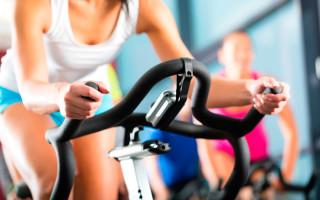 Инструкция по применению велотренажера Torneo