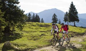 Скоростные велосипеды за 5000 рублей