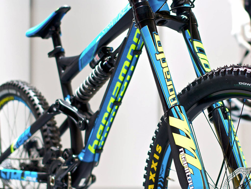 Бергамот велосипед